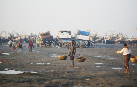 fishing boats lined up along the
