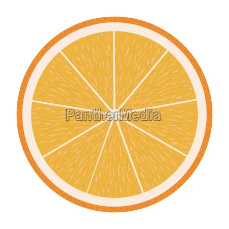 flat design icon of orange in