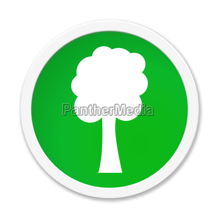 green button tree