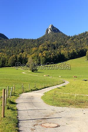 camino a un pico de montanya