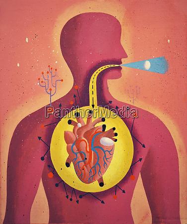 tracto digestivo directamente de la boca