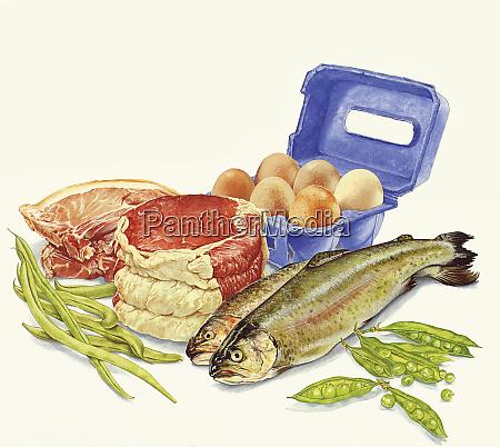alimentos con proteinas carne pescado huevos