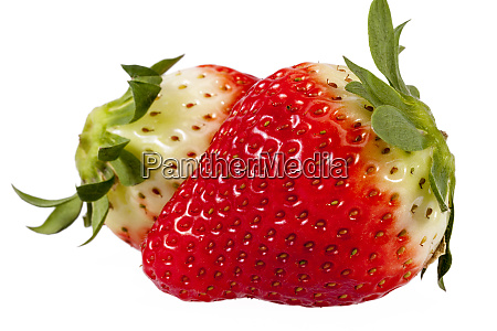 fresh fruits of red strawberry isolated