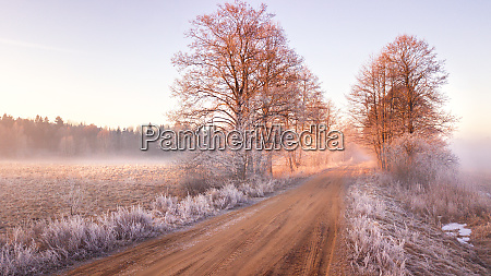 view of frozen road in early