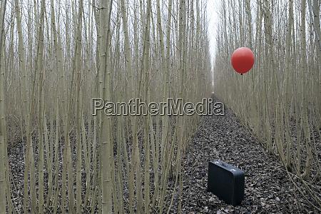 maleta con ballon rojo entre mimbre