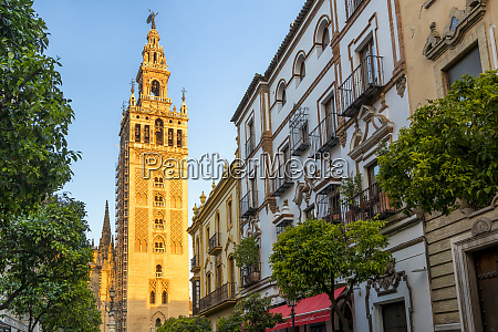 the giralda bell tower at first