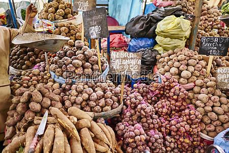 peru arequipa mercado central vegetable market