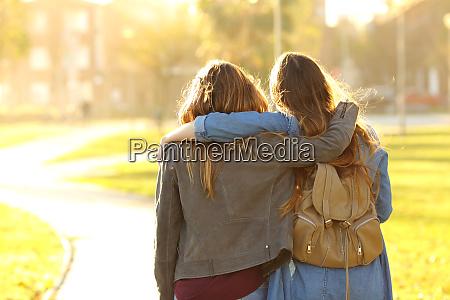 amigos afectuosos caminando al atardecer en