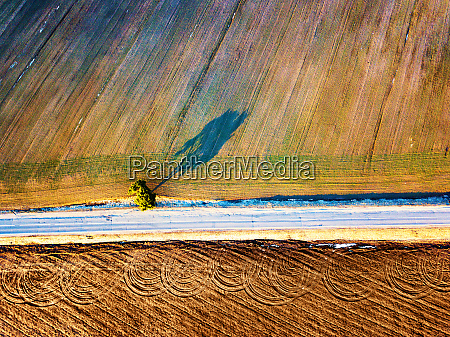 spring agricultural fields top view lone