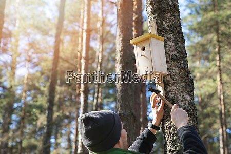 man nailing birdhouse on the tree