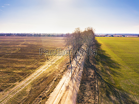 spring fields dirt rural road and