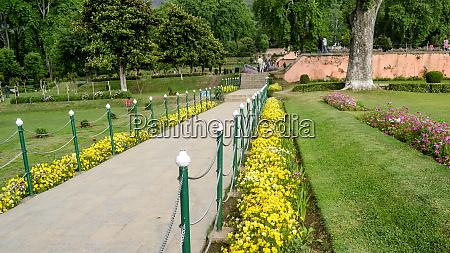 front yard garden stone path fence