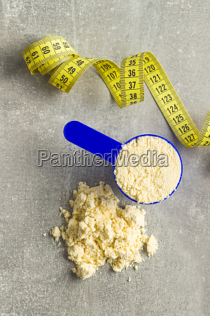 proteina de suero de leche en