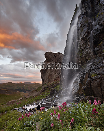 alpine waterfall with wildflowers at sunset