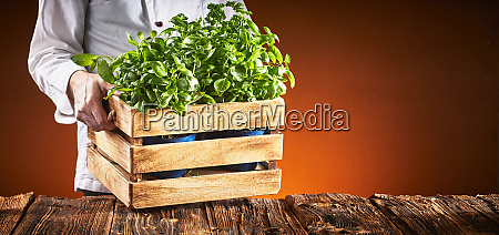 pizza chef carrying a crate of