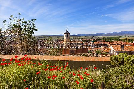 convent santa maria red poppies swallows