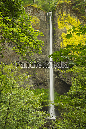 latourell falls columbia gorge oregon usa