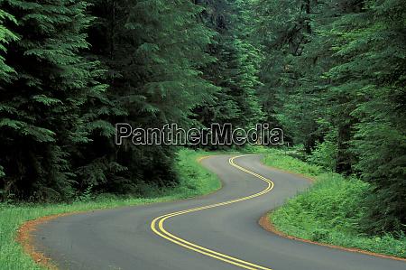 usa washington olympic natl park road
