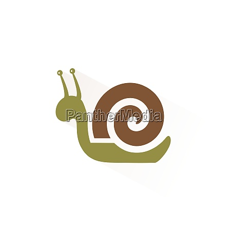 snail icon with shadow flat vector