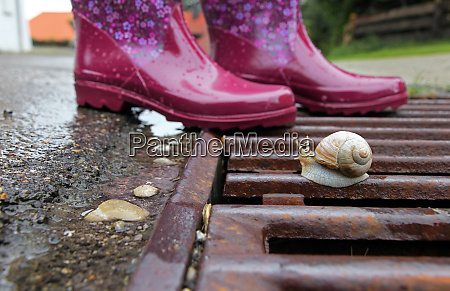 pink rubber boots on a drainage
