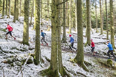 amigos corriendo en bosques nevados
