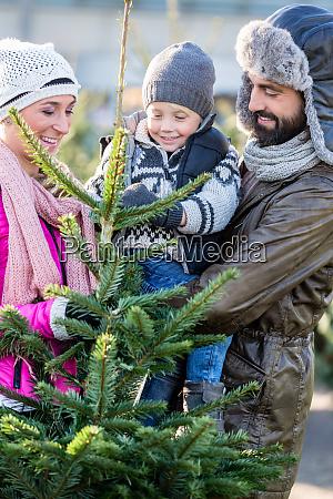 familia comprando arbol de navidad en