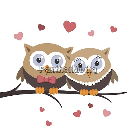 valentine owls in love on a