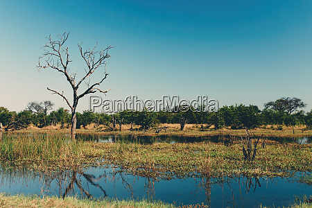 paisaje de la reserva de caza