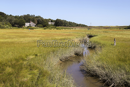 wetlands cape cod national seashore eastham