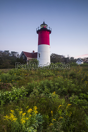 usa massachusetts cape cod eastham nauset