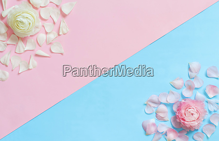 flowers on a light blue and