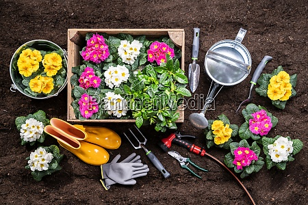herramientas de jardineria y macetas en