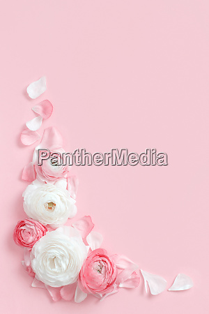 frame made of ranunculus flowers on