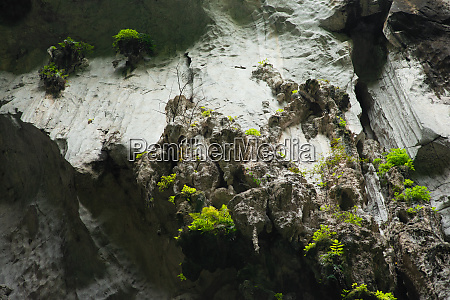 view in the batu caves