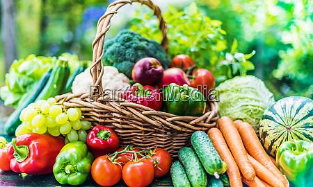 variedad de verduras y frutas organicas