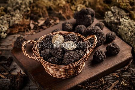 costosas trufas negras setas gourmet