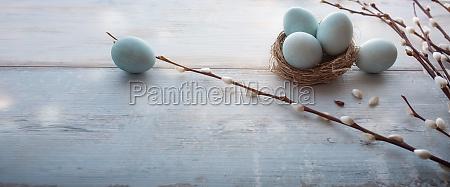 tiernos huevos azules de pascua en