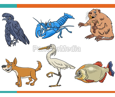 dibujos, animados, divertidos, animales, salvajes, personajes - 29845024