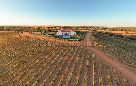 vista aerea de la finca vineyard
