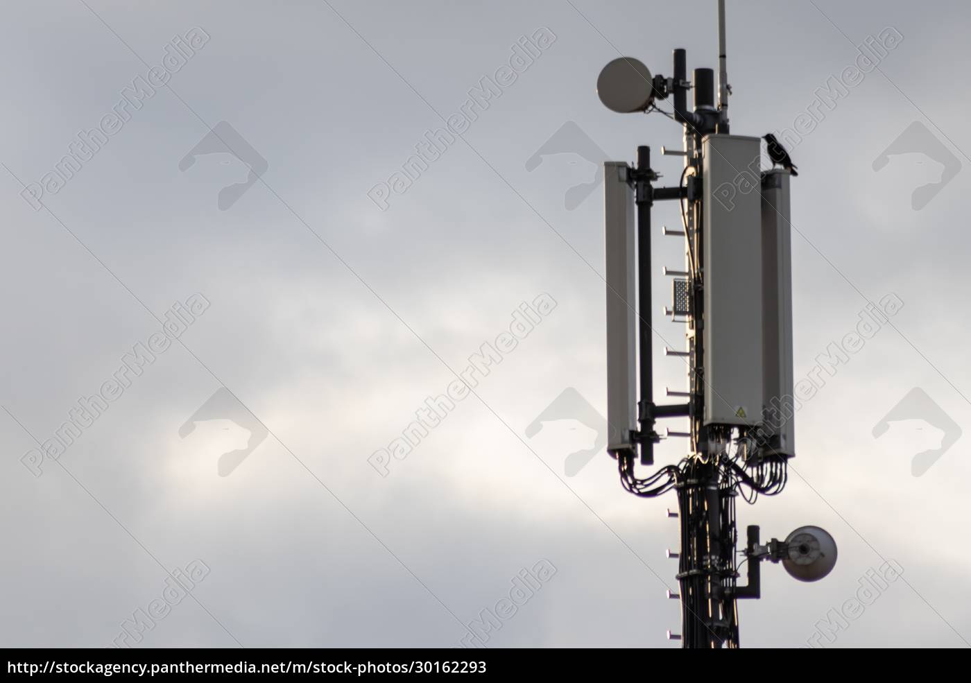 mobile, infrastructure, antenna, for, best, connection - 30162293
