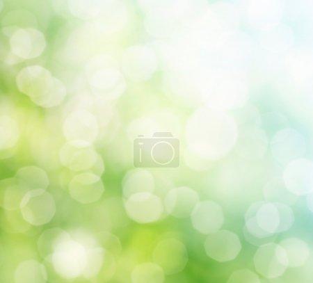 ID de imagen B10662557