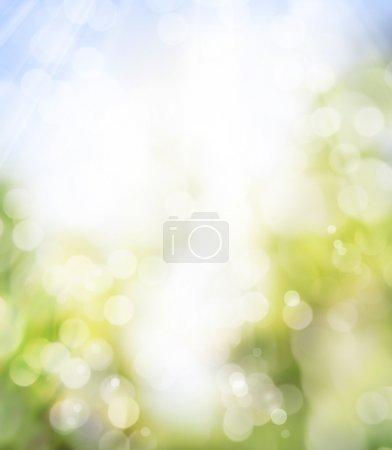 ID de imagen B8595742