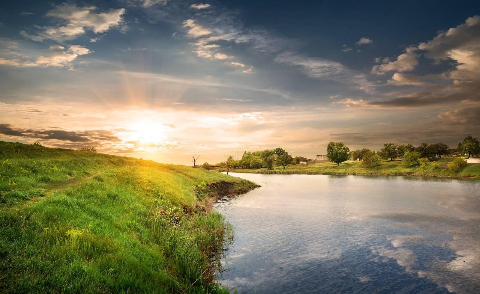 river, forest, sunlight, tree, shore, nobody - D14336576