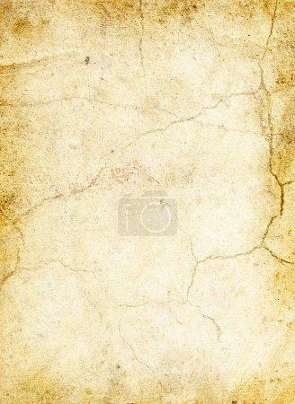 ID de imagen B1907235