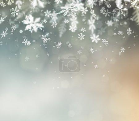 ID de imagen B14602023