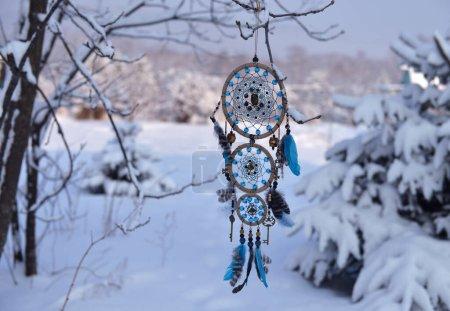 azul antecedentes circulo decoracion naturales arbol