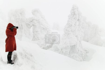 fotografia hermosa viajes parque naturales montanya