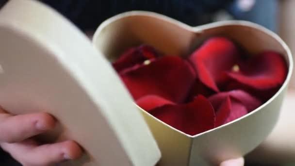 rojo regalo hermosa dia presente san