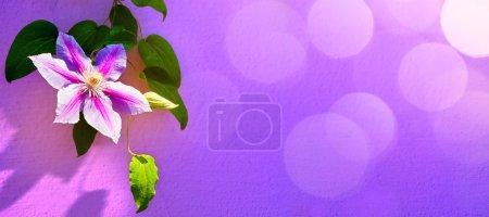 ID de imagen B73059593