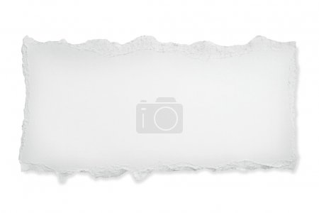 ID de imagen B5533936